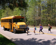 School Bus Crossing